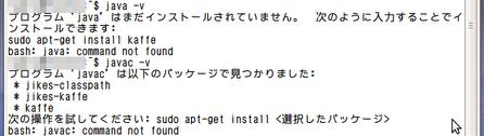 0921_netwalker_java_not_exist.png